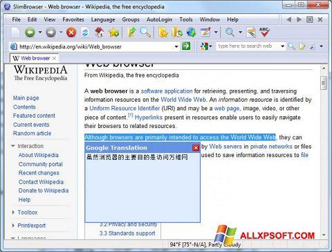Screenshot SlimBrowser for Windows XP