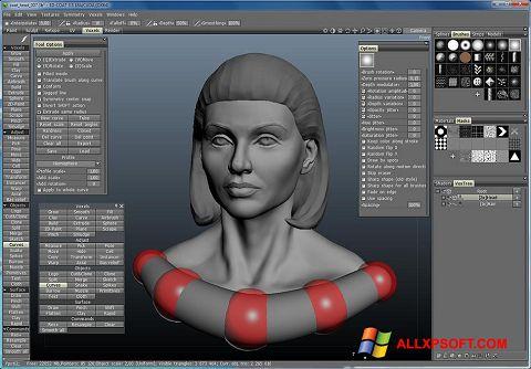 Screenshot 3D-Coat for Windows XP