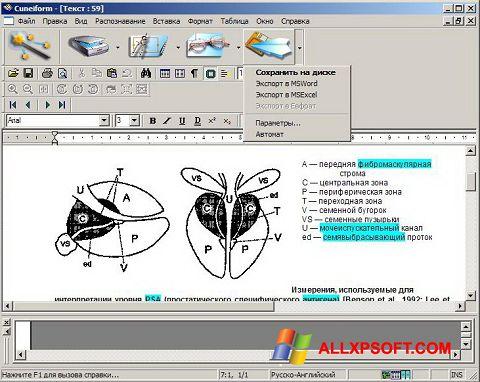 Screenshot CuneiForm for Windows XP
