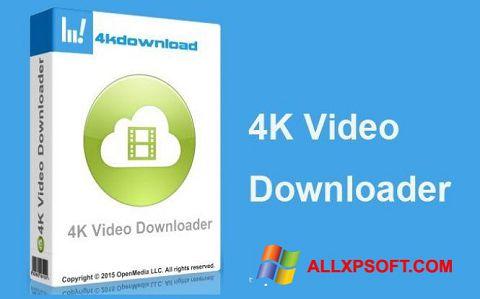 Screenshot 4K Video Downloader for Windows XP