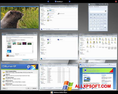 Screenshot Dexpot for Windows XP