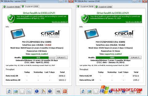 Screenshot SSDLife for Windows XP