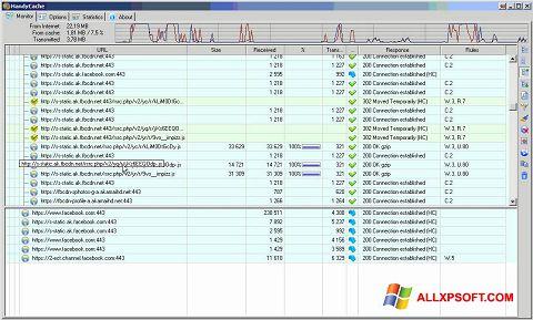 Screenshot HandyCache for Windows XP