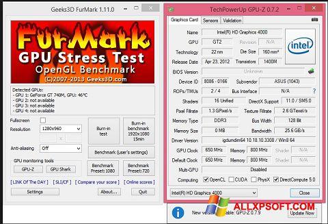 Screenshot FurMark for Windows XP