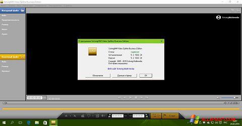 Screenshot SolveigMM Video Splitter for Windows XP