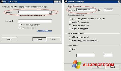 Screenshot Pandion for Windows XP
