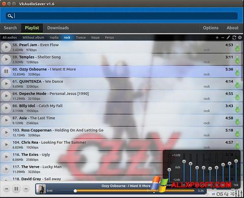 Screenshot VkAudioSaver for Windows XP