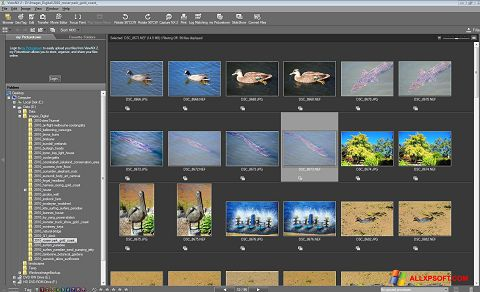Screenshot ViewNX for Windows XP