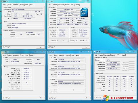Screenshot CPU-Z for Windows XP