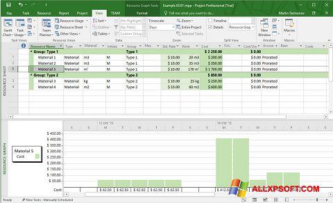 Screenshot Microsoft Project for Windows XP