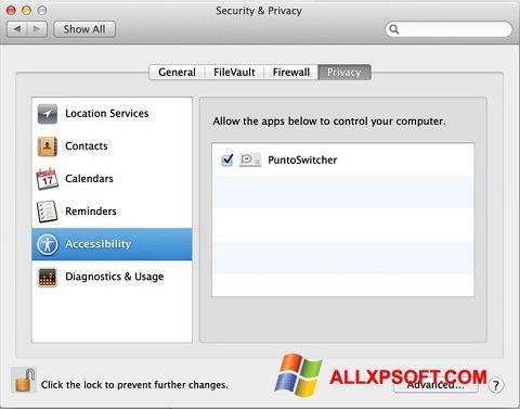 Screenshot Punto Switcher for Windows XP