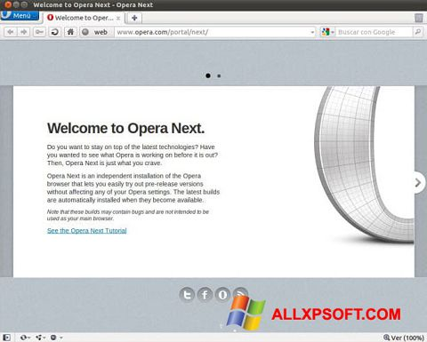 Screenshot Opera Developer for Windows XP